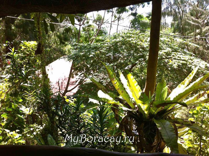 orchids_villas_15.jpg