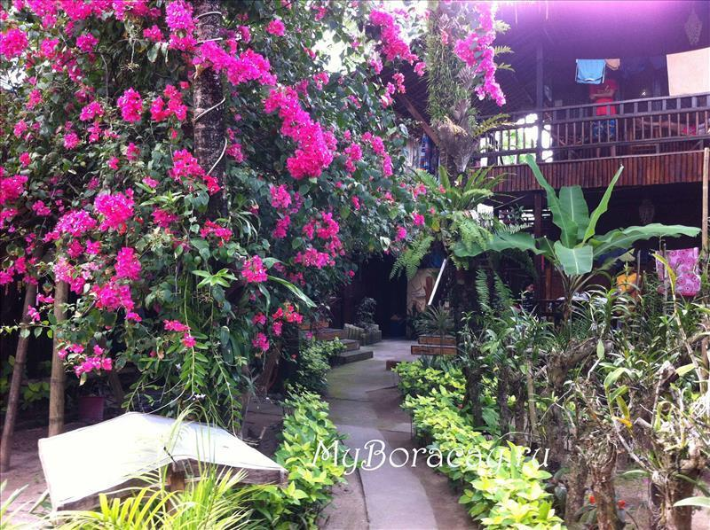 orchids_resort_09.jpg